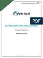 21-estruturas-organizacionais-rodrigo.pdf