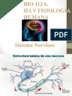 PPS Sistema Nervioso Segundo Semestre 2015