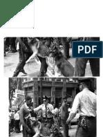 black civil rights photo revel