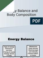 8.Energy Balance