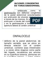 Malformaciones Congenitas de La Pared Toracoabdominal