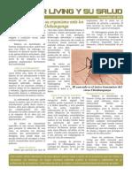 FL-Salud Bulletin Chikungunya
