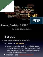 stressanxiety  ptsd post