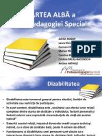 Studiu Privind Educația Specială Și Incluzivă - Cartea Albă a Psihopedagogiei Speciale