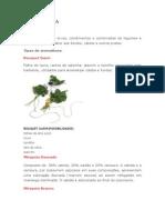 AULA PRATICA Aromáticos.doc
