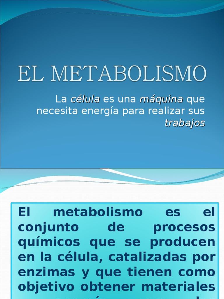 El Metabolismo Celular - Digestión - Ciclo del ácido cítrico