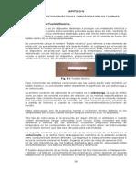 mem_1_1252620101.pdf