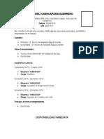 Modelo de CV 2015 -Actualizado