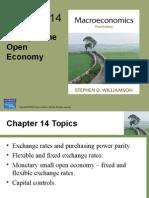 El dinero en una economía abierta