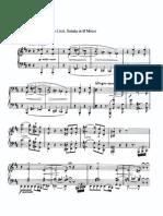 Liszt Franz Piano Sonata in b Minor