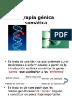 Terapia génica somática