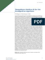 Quemaduras Cáusticas de Las Vías Aerodigestivas Superiores 2015