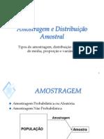 Slides- Amostra e Distrib