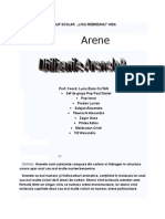 arene1doc