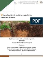 Practica 2-Determinación de Materia Orgánica en Muestras de Suelo