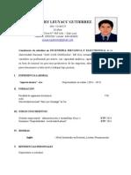 cv-practica.doc