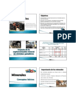 NAA 2015- 4 Minerales - Slides