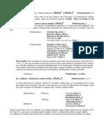 003 Inosilicatos.pdf