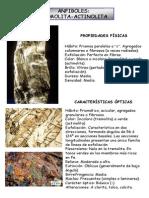 Atlas Anfínoles - Mane.pdf
