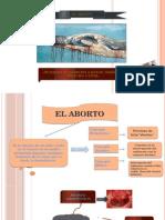 Diapositivas - El Abort