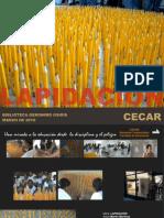 Afiches Cecar Martin Martinez Lapices Antenas