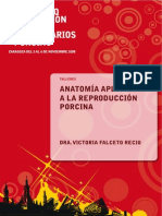 Anatomía aplicada a la inseminación porcina