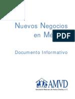 Nuevos Negocios en México-Documento Informativo 2013