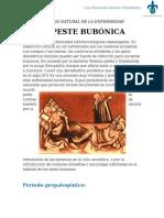 Historia Natural de La Enfermedad- Peste Bubonica