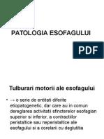 Curs III - Patologie Esofag