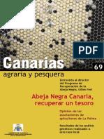Abeja Negra Canaria