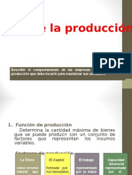 Teoría de La Producción.