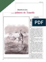 La Palmera de Tenerife