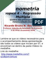 06 Tpico5 Heterocedasticidade 130213191813 Phpapp01