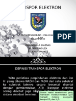 Transpor Elektron.ppt