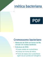 Genetica bacteriana 1