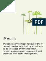IP Audit.pptx
