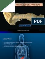 Anaomia y Fisiologia Del Pancreas. GASTROENTEROLOGIA