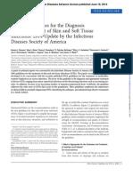 Guidelines IDSA STI 2014