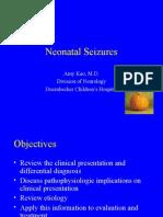 Neonatal Seizures 5 2005