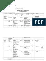2015 2016 Grade i Lesson Plan Comunicare in Limba Engleza Brebenariu Simonettel