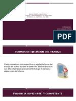 Ejecución de La Auditoria-Normas y Proc-NIA 500 (1)