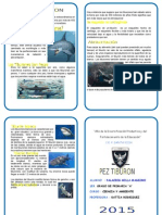Diptico Del Tiburon