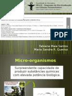 seminario biossintese-Fabi e Maria.pptx