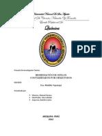 Nematodos Revision 1