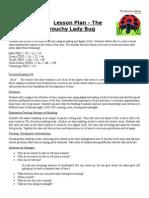 informal lesson plan - grouchy ladybug
