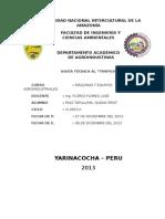 Informe Del Trapiche