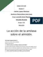 Práctica 2 Acción de La Amilasa Sobre El Almidón
