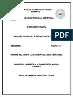 Proceso de Atención Enfermero del servicio de Neonatos en el Hospital General de Durango ahora Materno Infantil