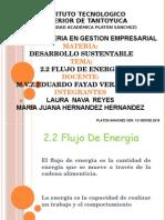 Presentación2 flujo de energia