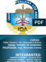 PROCESOS LACTEOS - YOGUT